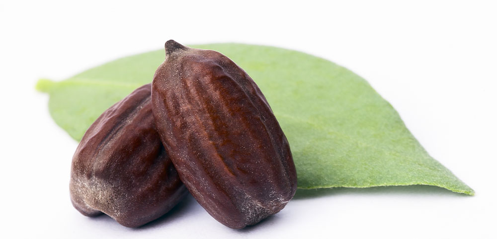 jojoba, moisture, easy to comb, natural ingredients, essential, natural haircare, quality