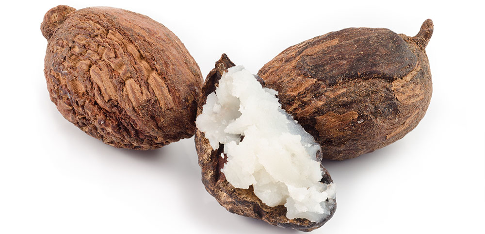 shea, moisture, repair brittle ends, natural ingredients, essential, natural haircare, quality